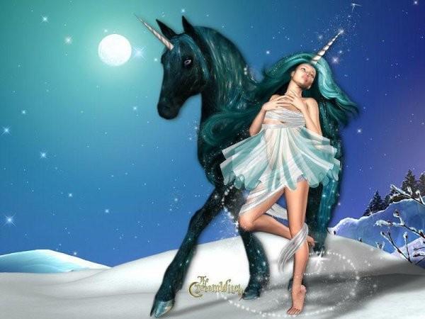 licorne noir et fee