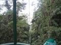 tn-telepherique-dans-la-foret-pluvieuse