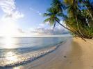 magnifique plage martinique